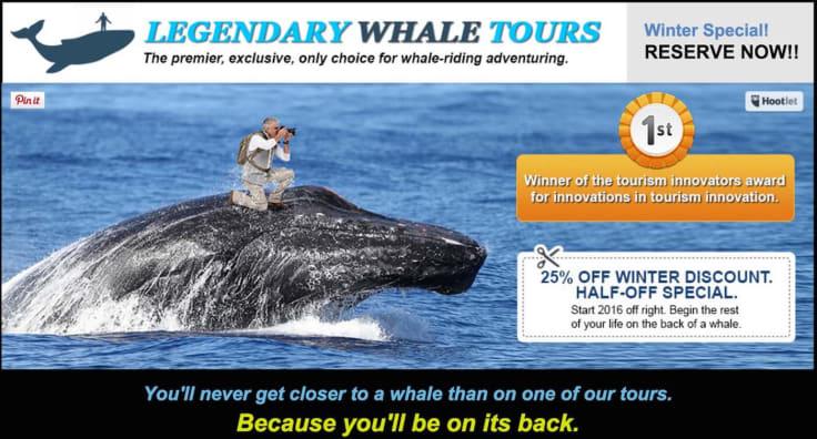 legendary whale tours