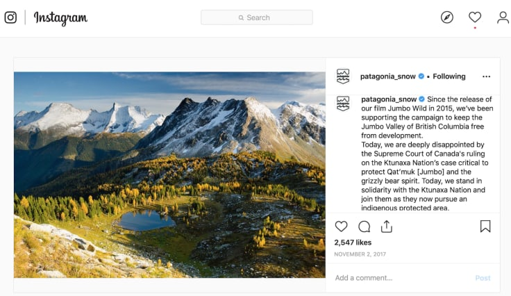 Patagonia inspiring social media campaign