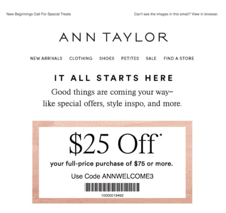 ann taylor email marketing
