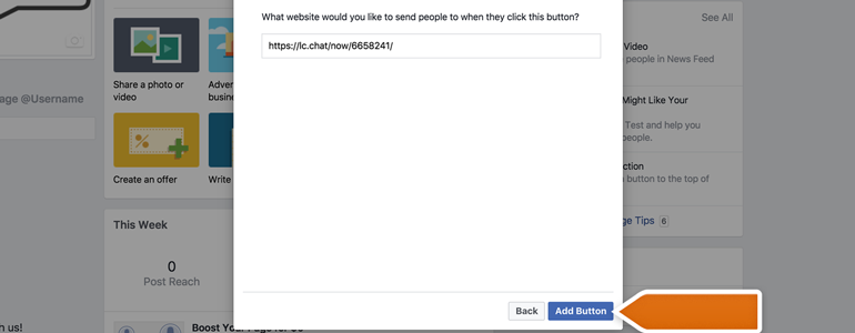 Paste the Chat Link to the URL field