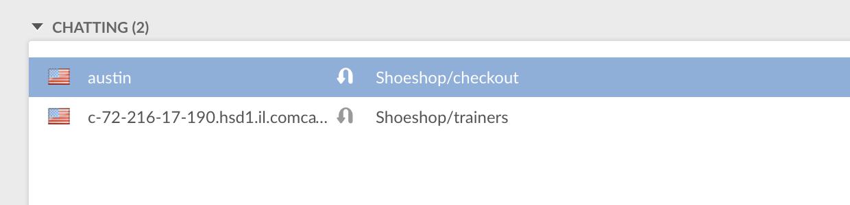 Choosing a website visitor