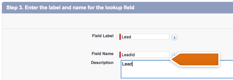 Salesforce Lead editing