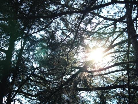 Raiva no processo do luto | Nomoblidis | Povenção de Suicídio