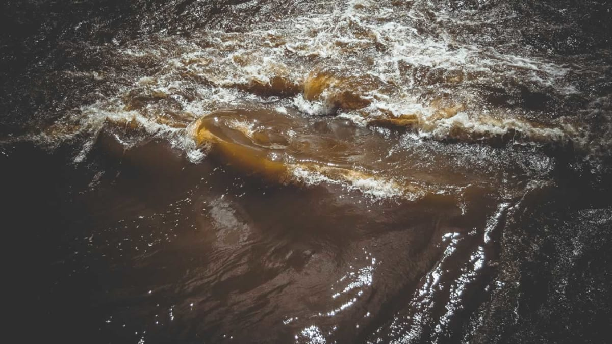 Água Turva   Nomoblidis   Posvenção de Suicídio