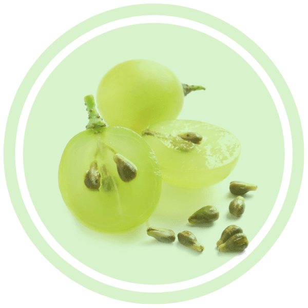 The Delectable Skincare Wonders Of Grapeseed Oil