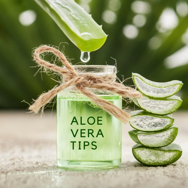 4 Benefits Of Adding Aloe Vera Gel To Your Skincare Routine