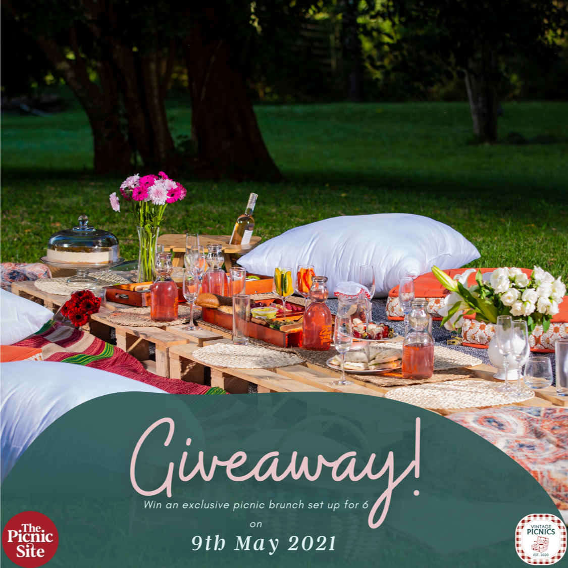 Win it!  A deserved Mama's Day Picnic Treat for Six