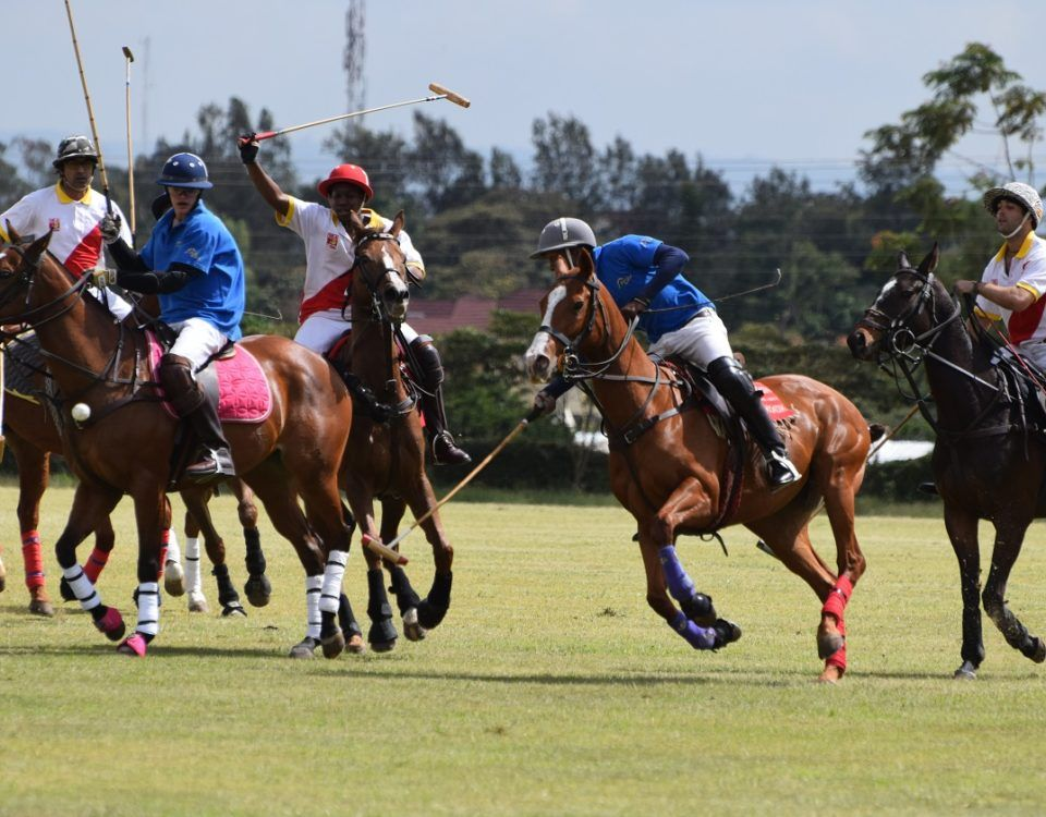Straight From The Horse's Mouth: An Action-packed Polo Weekend Coming Up