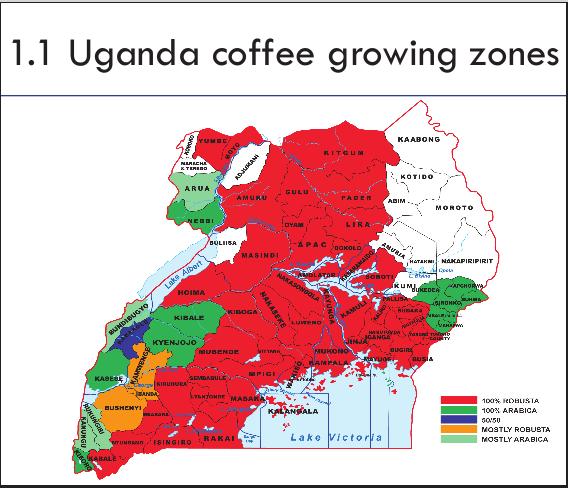 Uganda coffee growing zones