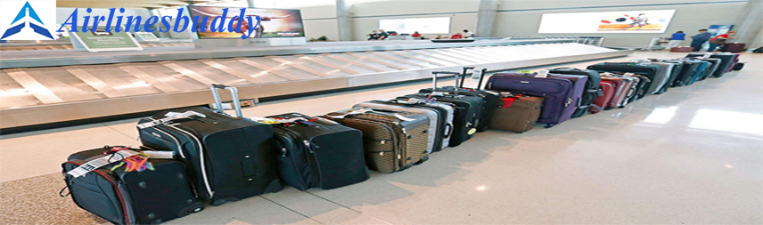 Solomon Airlines Checked Baggage