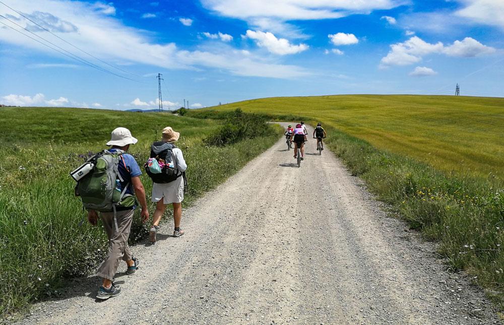 The Via Francigena of the South - Path