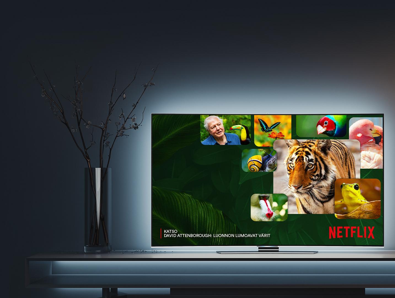 Katso lastenohjelmat Netflixistä