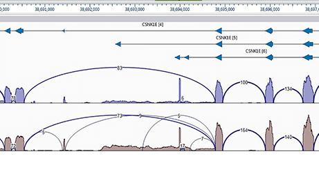 Isoform Analysis for RNASeq