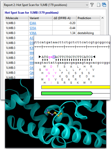 PCR Site Directed Mutagenesis