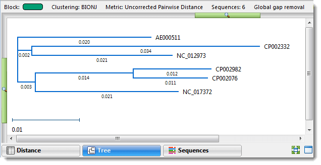 Phylogenetic tree in MegAlign Pro