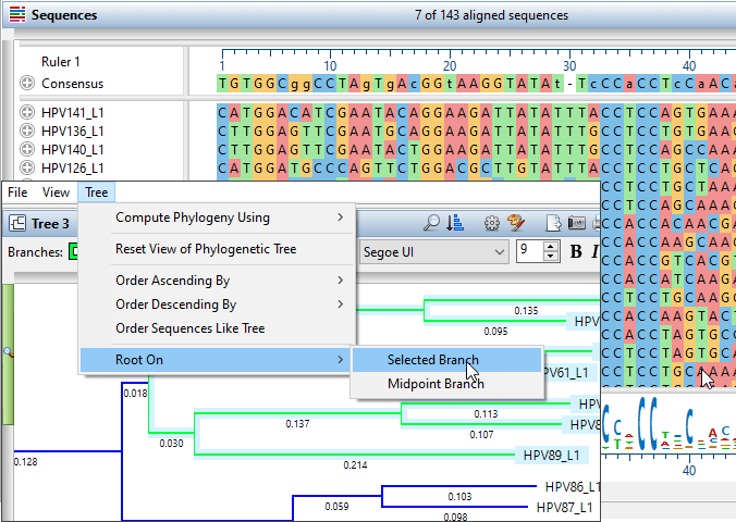 Selected phylogenetic tree branch in MegAlign Pro