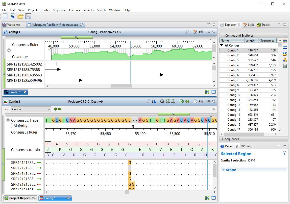 Using Lasergene to De Novo Assemble PacBio HiFi Data