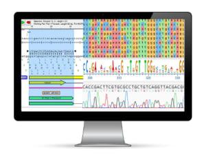 Lasergene Molecular Biology
