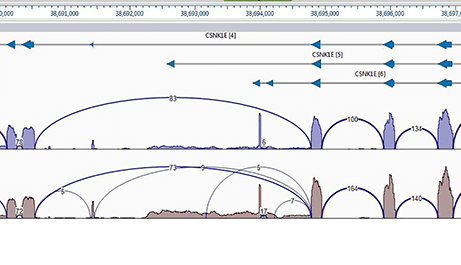 Isoform Analysis for RNASeq