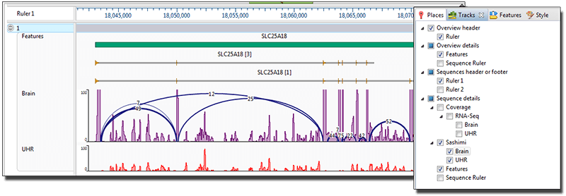 RNA-Seq analysis in GenVision Pro