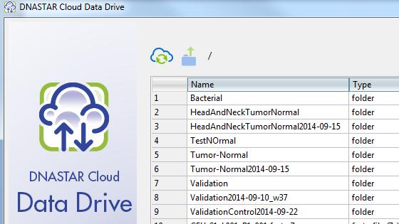The DNASTAR Cloud Data Drive window