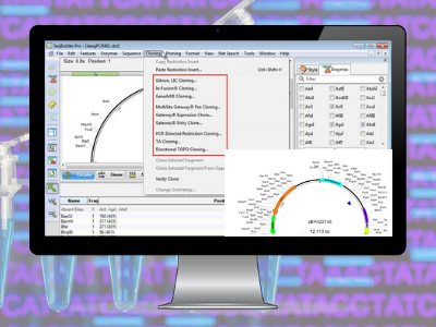 Lasergene Molecular Biology Software