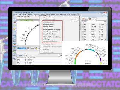 Lasergene Molecular Biology Software