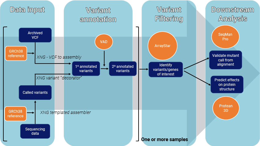 Steps for annotating and analyzing multi-sample variant data in Lasergene. DNASTAR software tools and supplemental data are shown in orange.