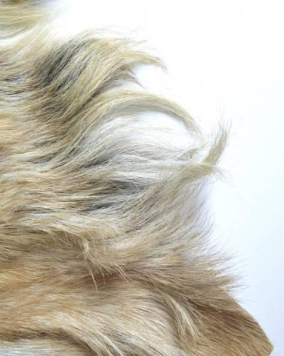 geitenvel-blond-detail