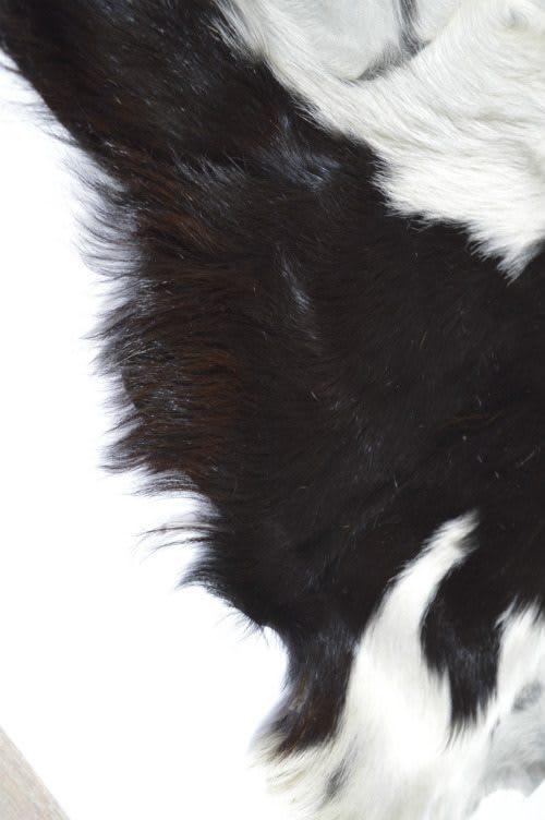 Ziegenfell schwarz weiß Detail