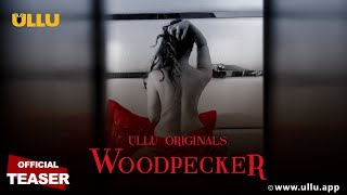 Woodpecker 2020 ULLU Web Series
