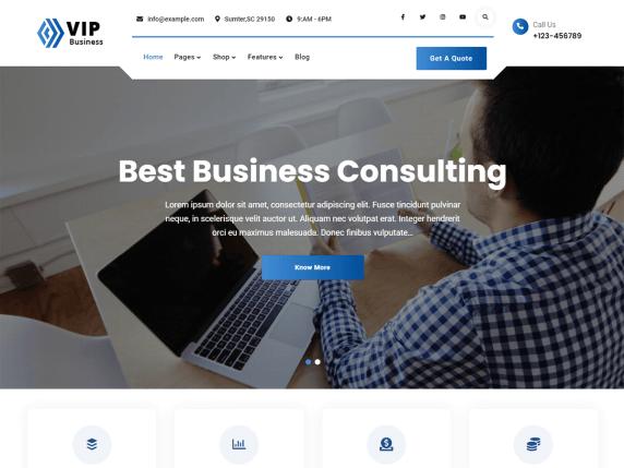 VIP Business WordPress Theme