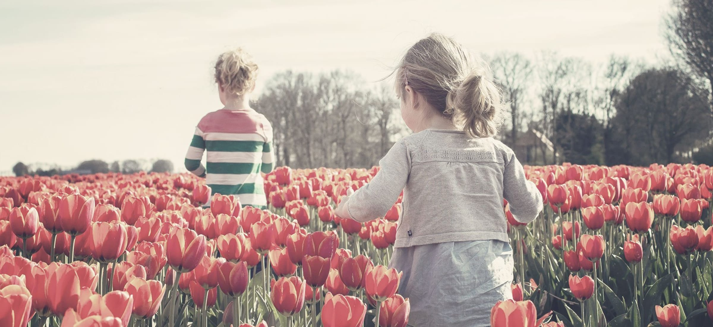 Kids in field of flowers