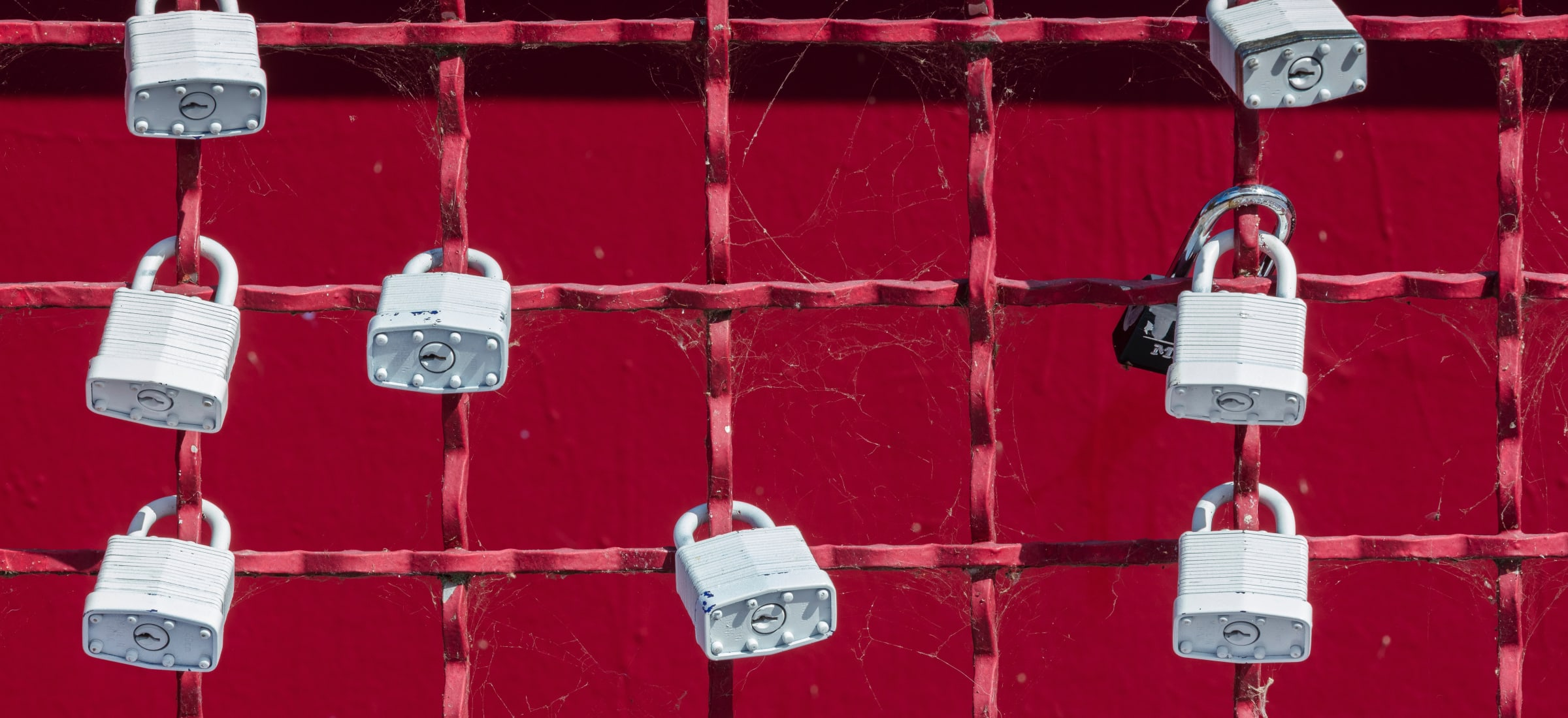 Padlocks on red fence