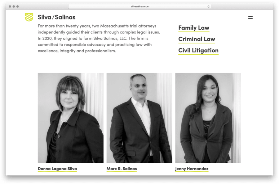 Silva Salinas Website