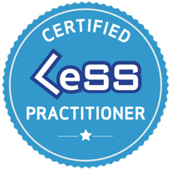 Certified LeSS Practitioner Workshop by Bas Vodde