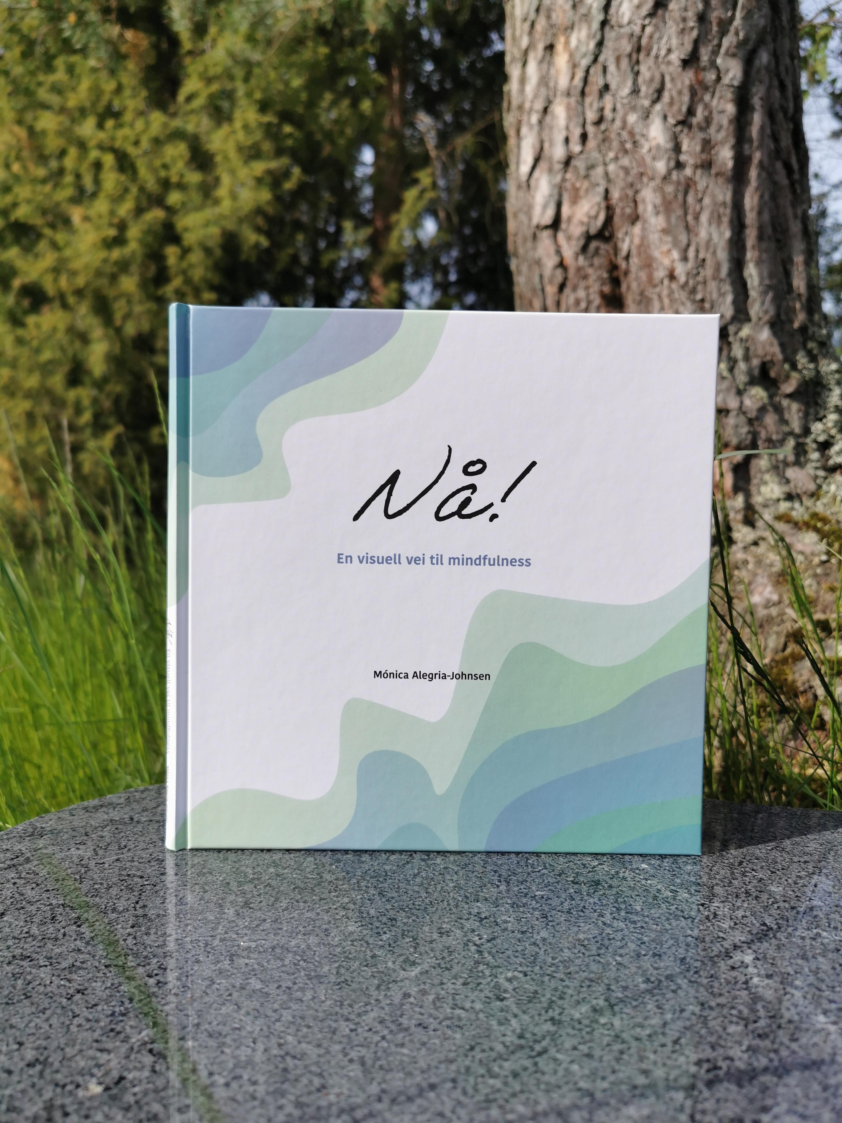 Westerdals Institutt for Kommunikasjon og Design - Mónica Alegria-Johnsen
