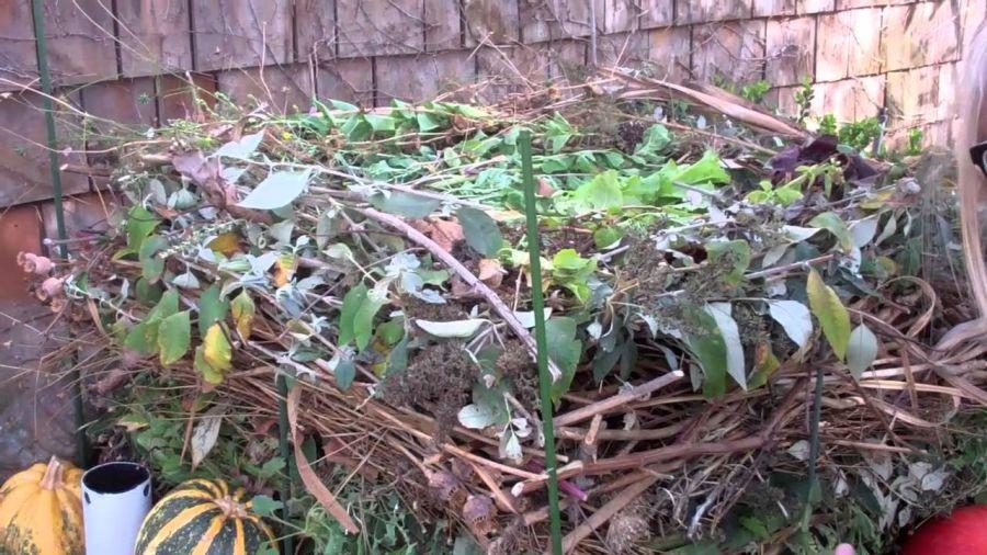 Soğuk Kompost