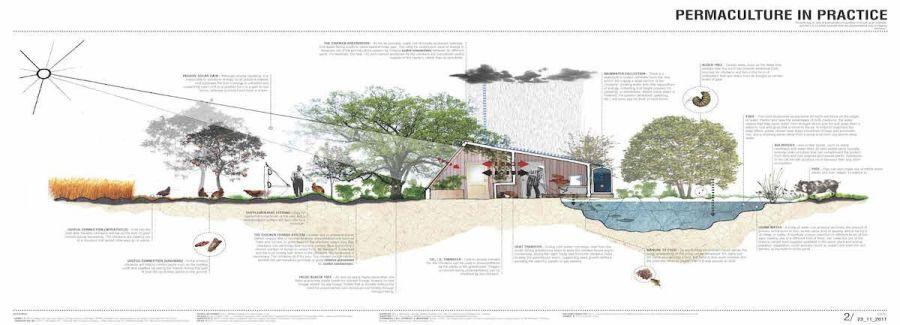 Permakültür Tasarım Alanı