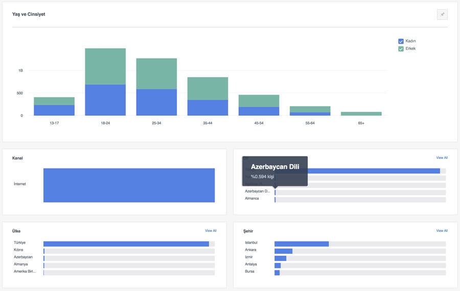 Facebook analytics demografi