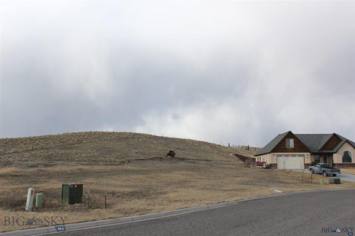 1203 Ridgeview Trail Livingston