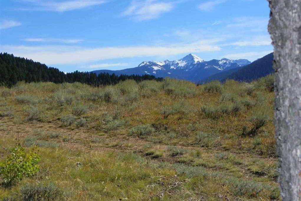 Tract-6 Cottonwood Ranch Trail Bozeman