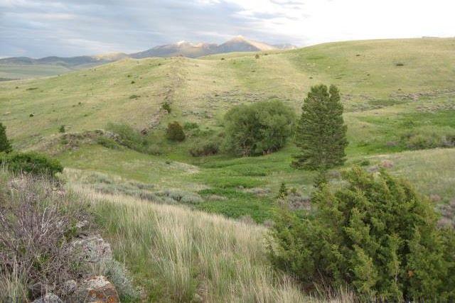 189-190 Tumbleweed Trail Livingston
