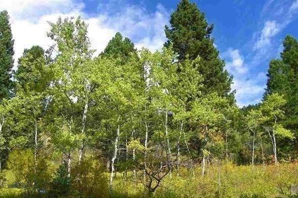LOT-10 Cottonwood Ranch Trail Bozeman
