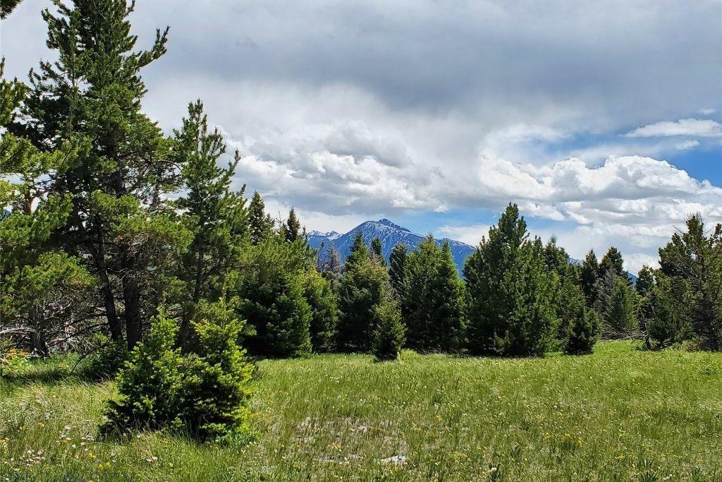 LV15 Livingston Peak Livingston