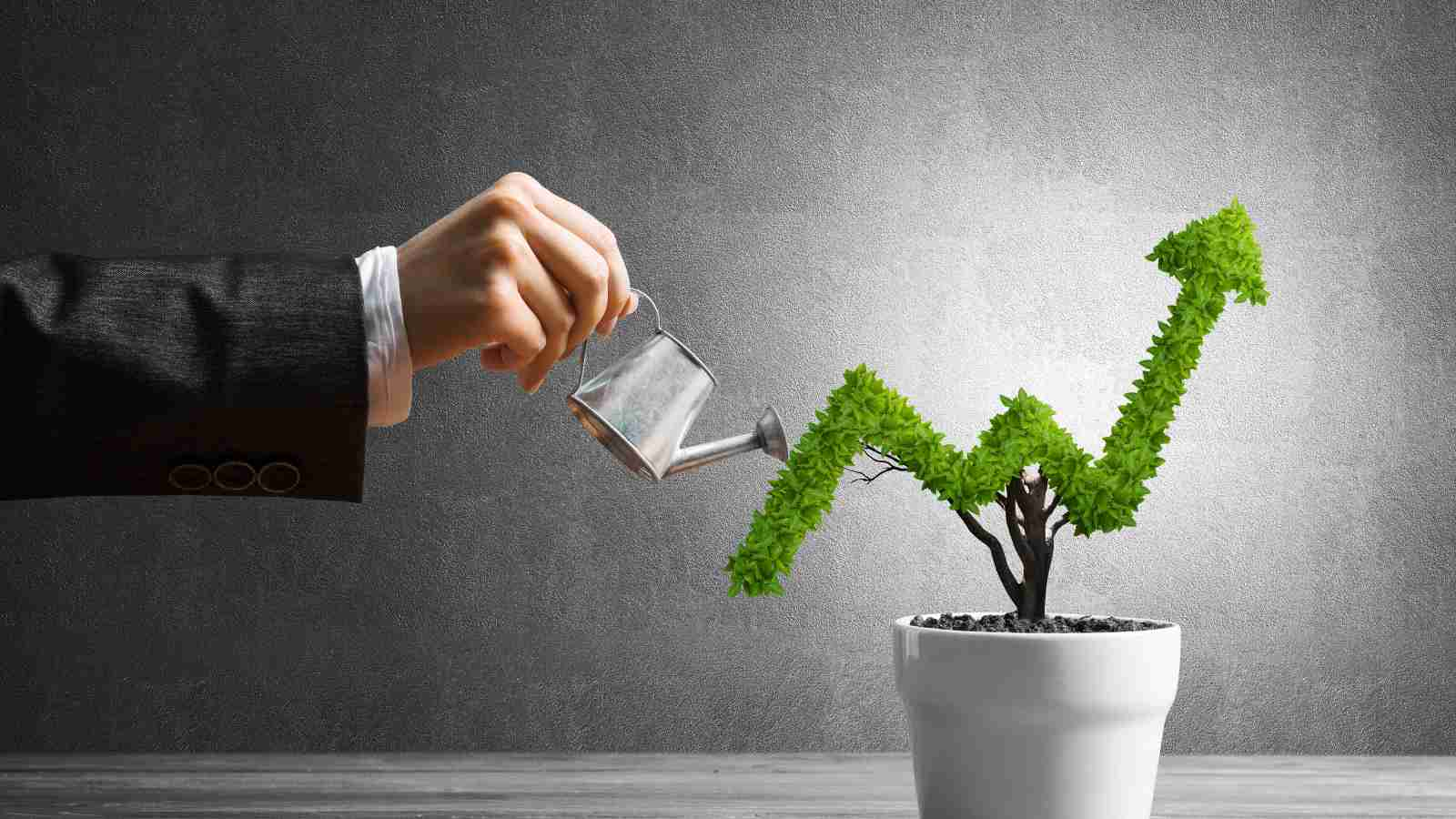 Do businesses make first year profit?