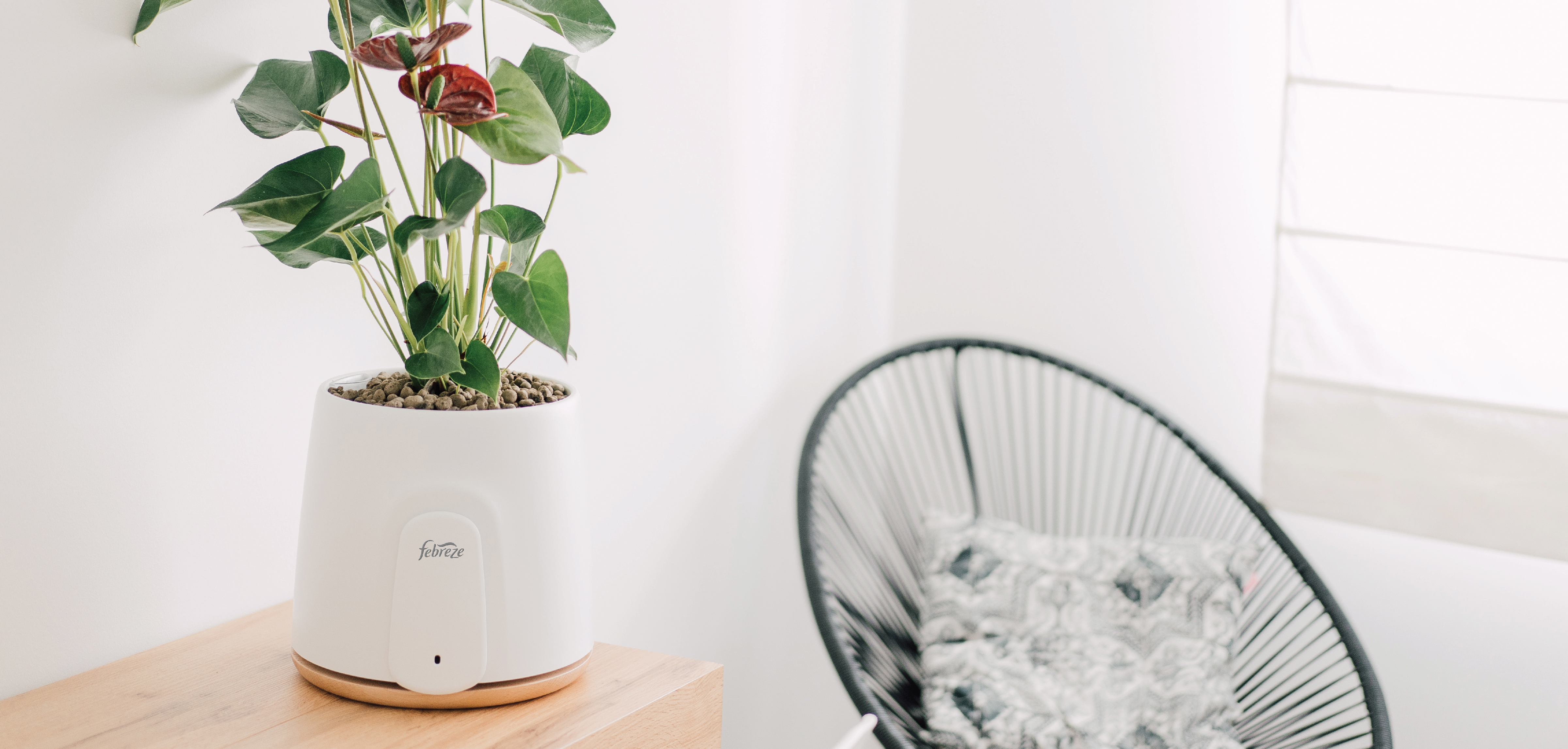 Febreze atural plant based air purifier in a room with a chair