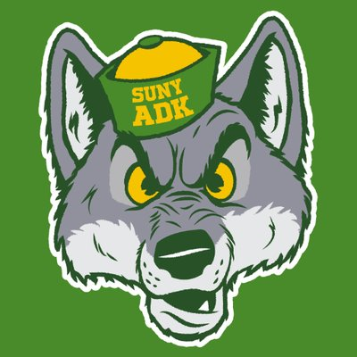 Adirondack Community College - Logo
