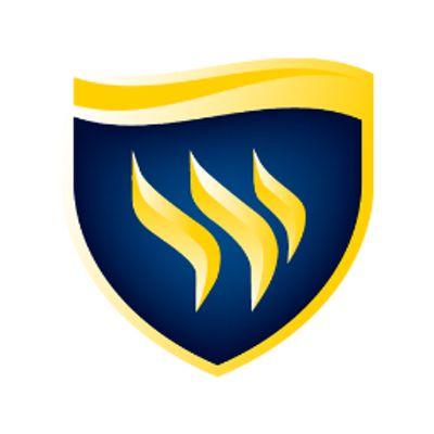 Texas Wesleyan University - Logo
