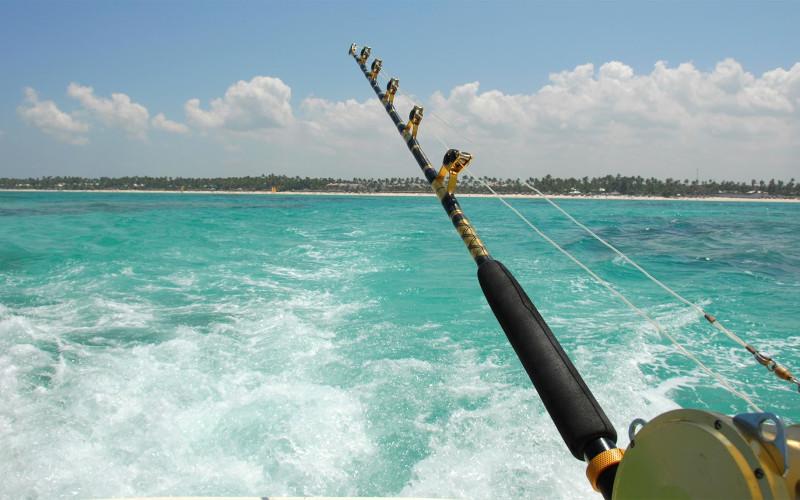 Florida Marinas - Marinas and Boat Slips in Florida - Dockwa